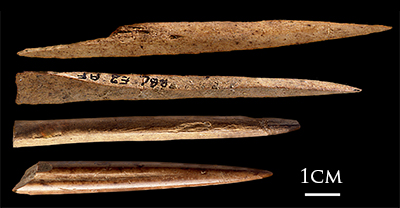 Blombos_Cave_bone_tools