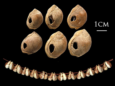 Blombos_Cave_marine_shell_beads