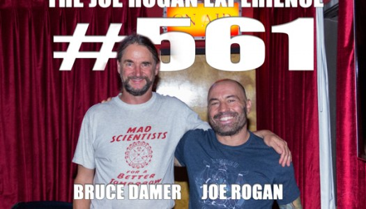 Dr. Bruce on the Joe Rogan Experience podcast