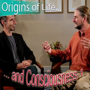 057-LevityZone-Origin-of-Life-and-Consciousness-1-COVER